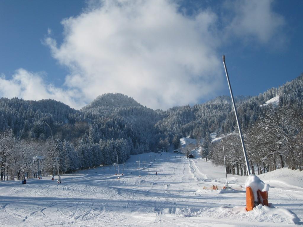 Draxl Winter